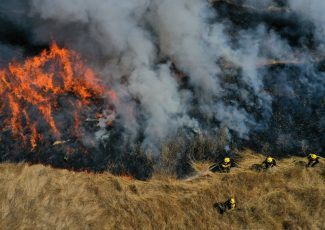 LA Explained: Understanding And Prepping For Wildfires – LAist