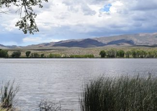 Travelers making use of free campsites at Pahranagat Lake – Lincoln County Record